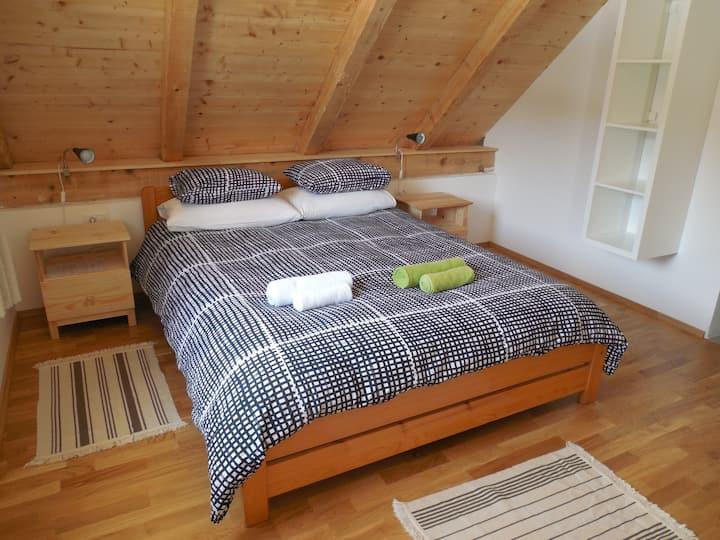 Gueshouse Bor Double room attic near the Park