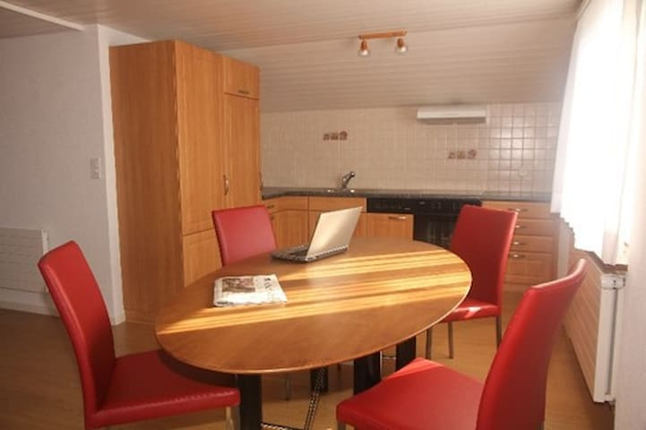 Appartment for Temporary Visitors - Berikon - Appartamento