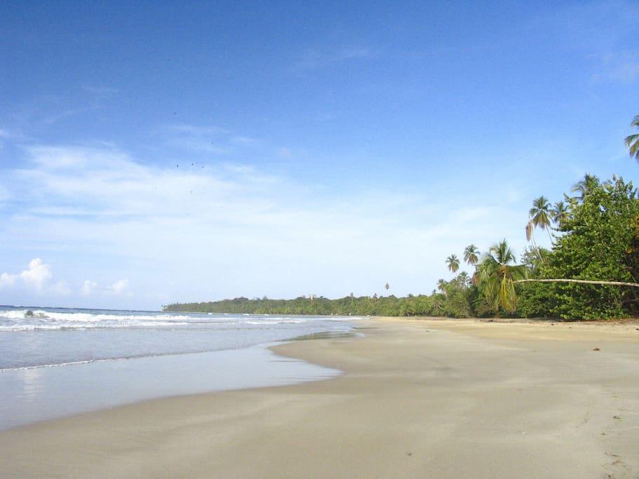 The beach in Manzanillo