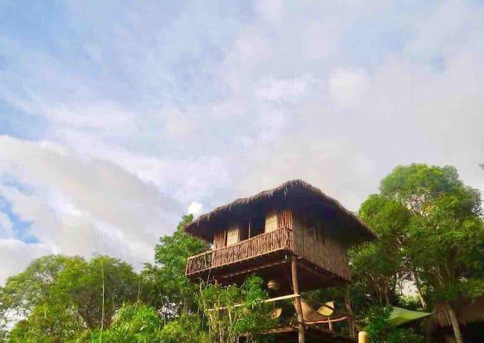 Sanctuaria Treehouses Tree Tower