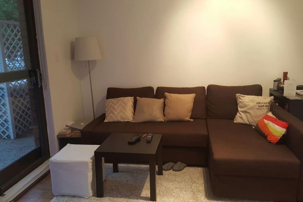 Lounge area / Sofa bed