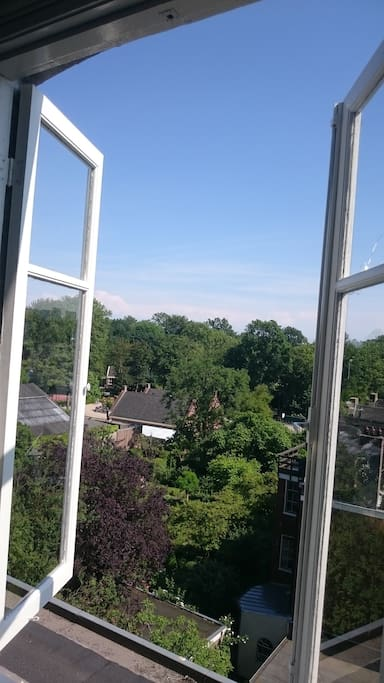 View on the Vondelpark from the living room