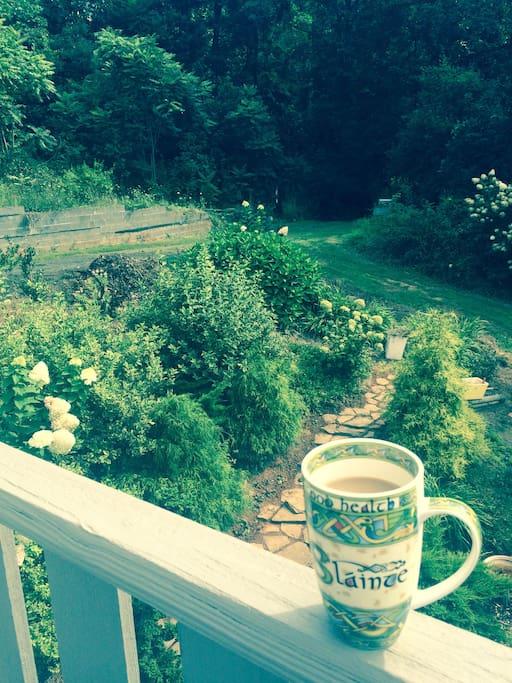 Side garden view.