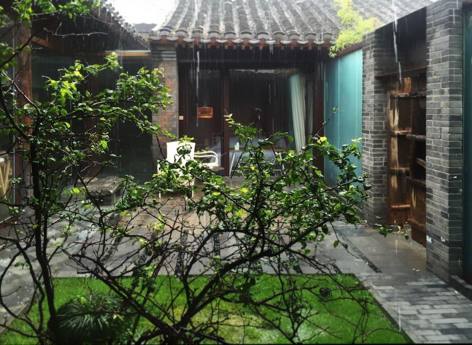 雨中的有棠的风景