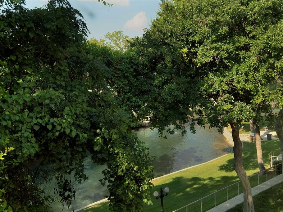 Comal River 303-View from Livingroom Window