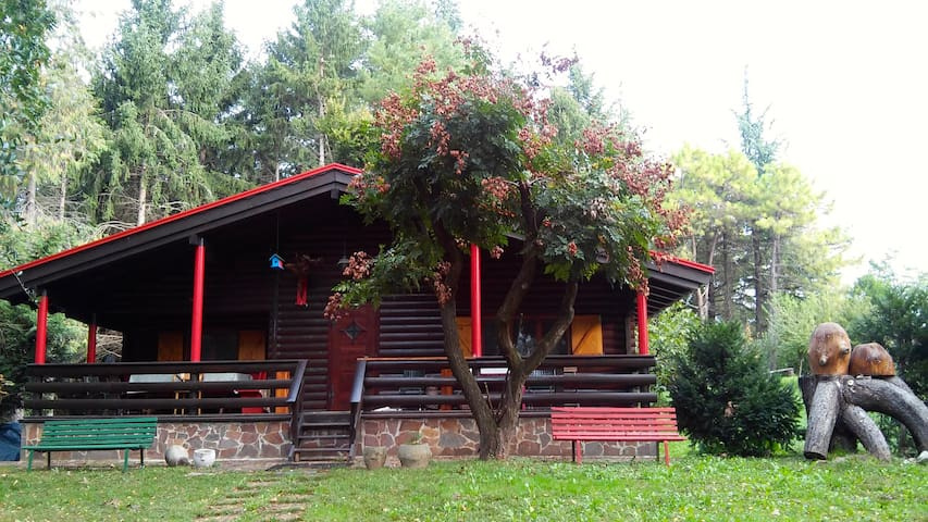 The chalet between Udine and San Daniele