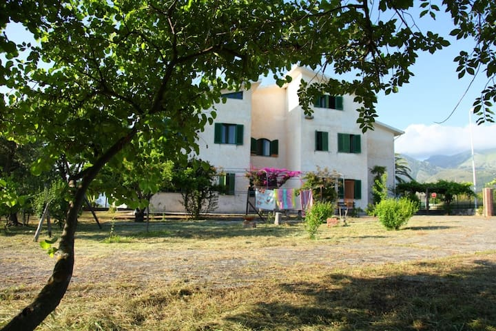 Guest House with garden and parking, near the sea - San Nicola Arcella - Pis
