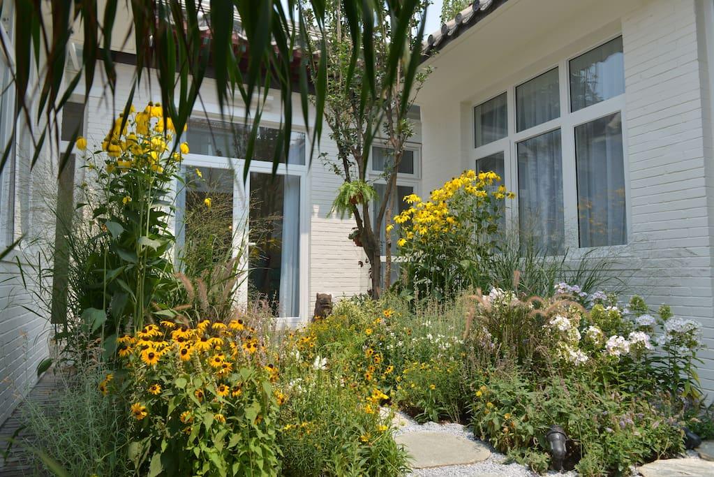 清晨走出房间享受这阳光的沐浴,欣赏着花园的景致,呼吸着清新的空气给您带来一天美好而舒畅的心情