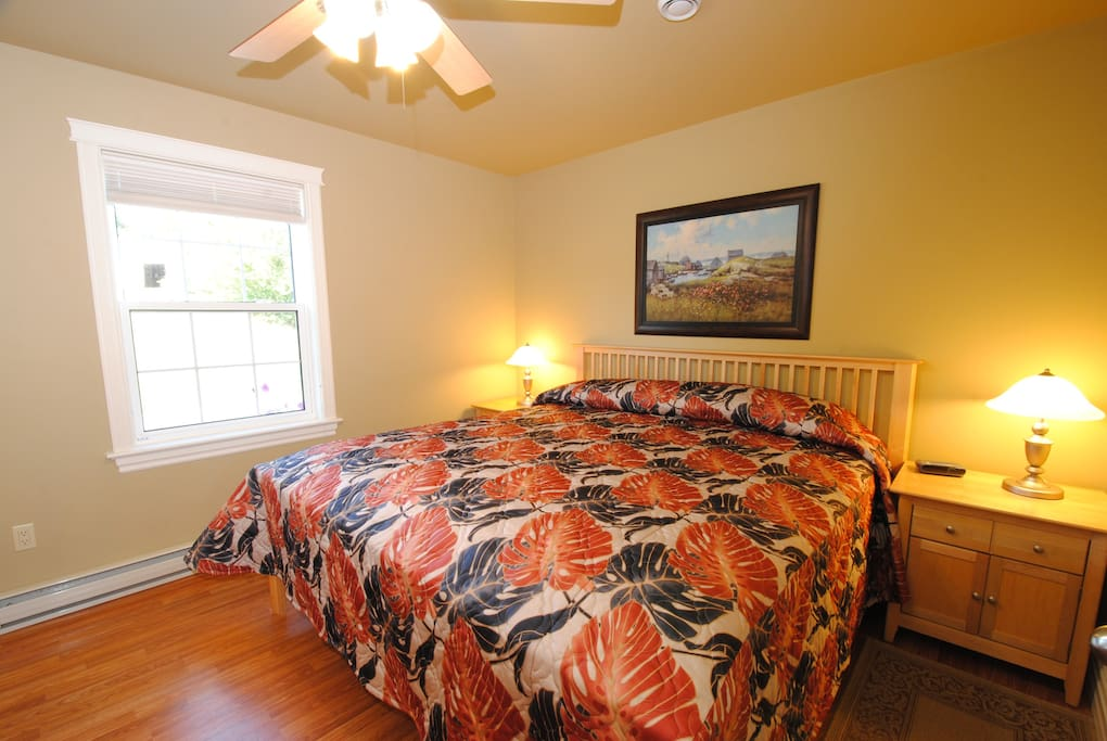 The master bedroom featuring a king size bed