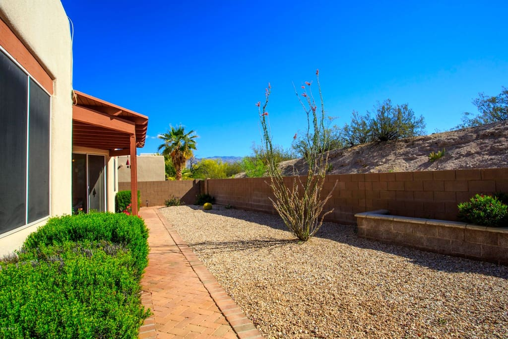 Back patio with desert landscape & mountain views