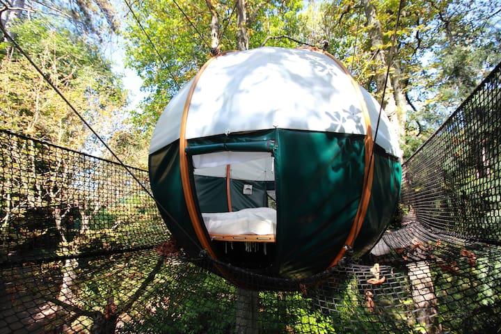 Cabane n°1 dans les arbres du parc d'un château