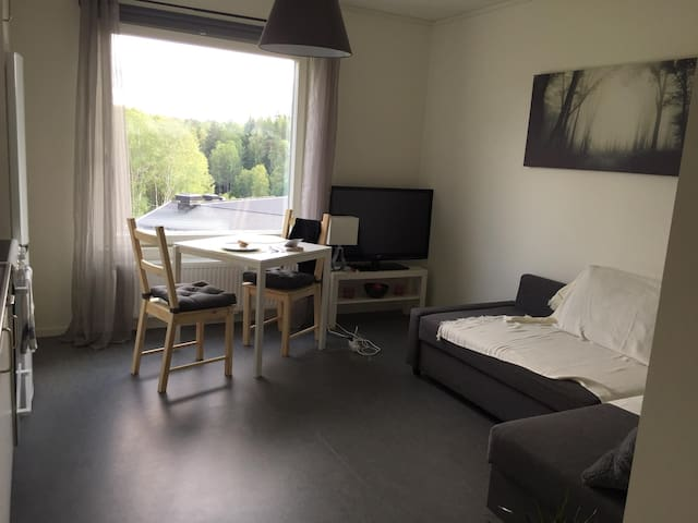 New studio apartment 20 min to Centralen.