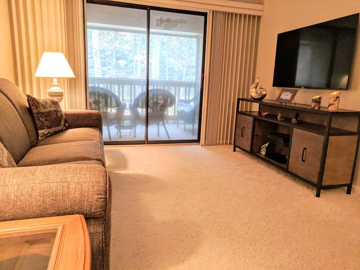 Fully Furnished Condo Perfect for Work Travel