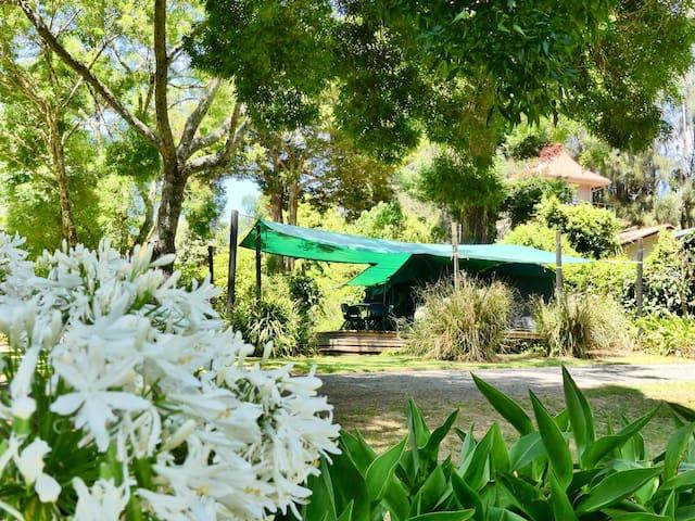 Glamping - Family Deck-Mounted Safari Tent