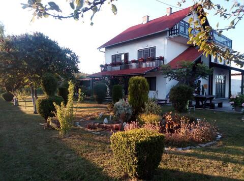 Room Marija Brajdić