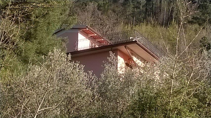 La casa del Grillo, sulla collina Toscana - Reggello