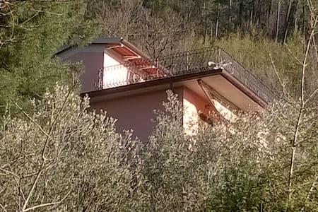 La casa del Grillo, sulla collina Toscana - Reggello - Lejlighed