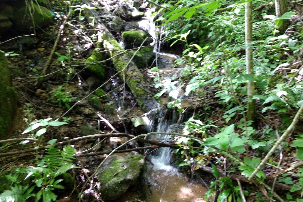 Rushing stream can be heard from front porch!