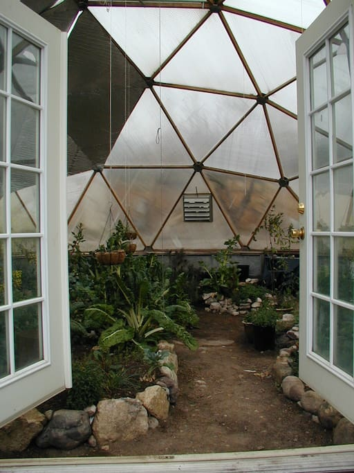 Geodesic Greenhouse Dome located on the property.  Feel free to Graze!