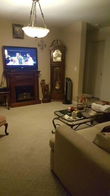 TV Room adjacent to the bedroom