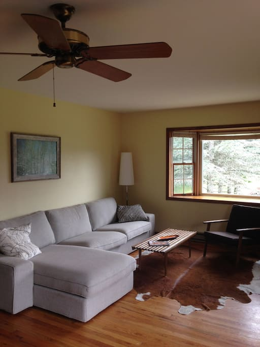 Bright and large family room