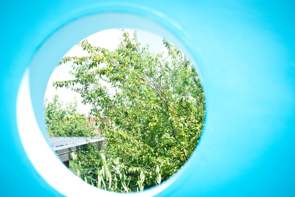 Look through one of the portholes...