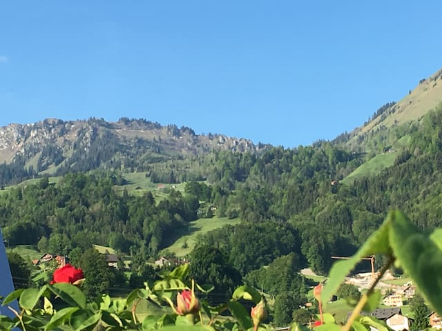 Mountain Klewenalp/Buochserhorn behinde the house