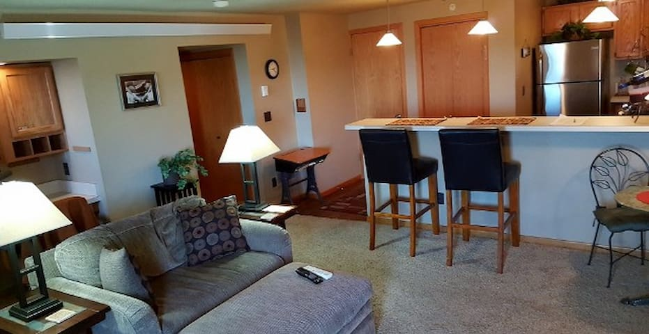 Fully Furnished and Equiped 1Bdr Condo