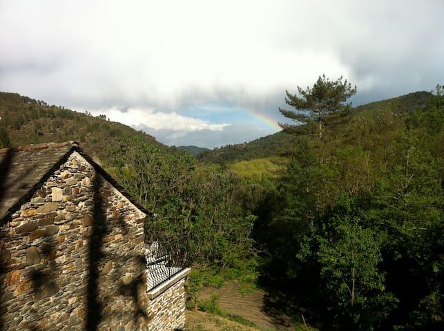 La Clédette : 100% Cévennes - Moissac-Vallée-Française - Ev