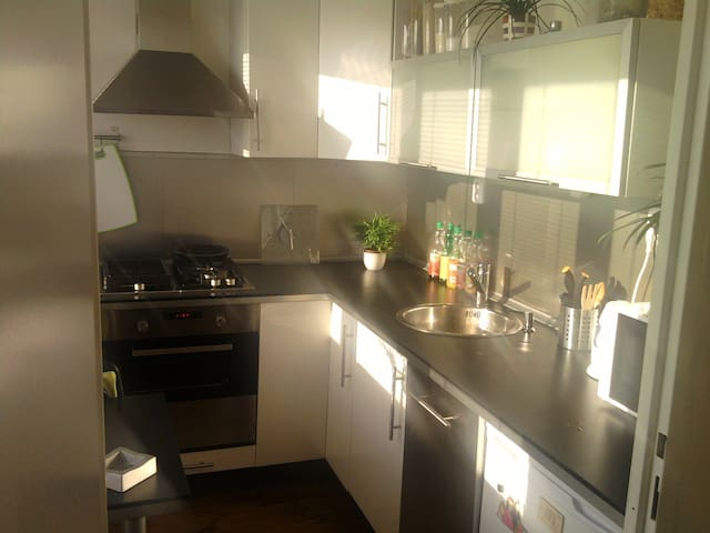 apartment 1+1, 2 km from center - Ostrava - Apartamento