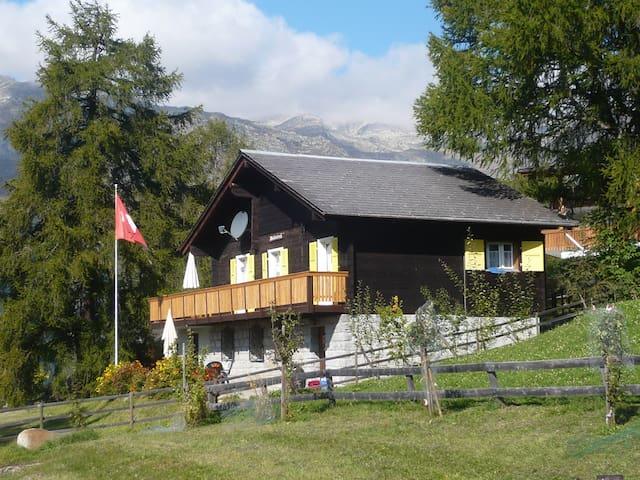 Chalet Waldesruh - Bellwald - House