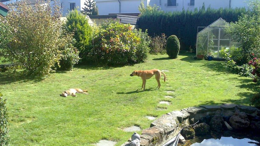 priv bathroom, garden, dogs welcome