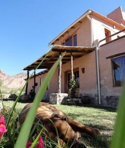 Room Rosa between hills and cactus - Cabin