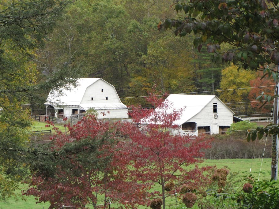 A view of our farm as Fall approaches