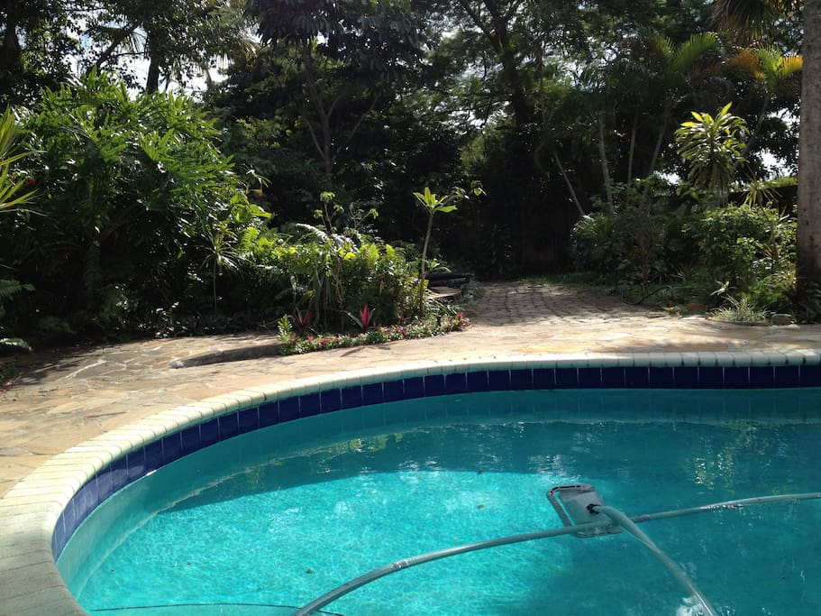 1934 key west cottage pool garden case in affitto a for Chelsea pool garden key west