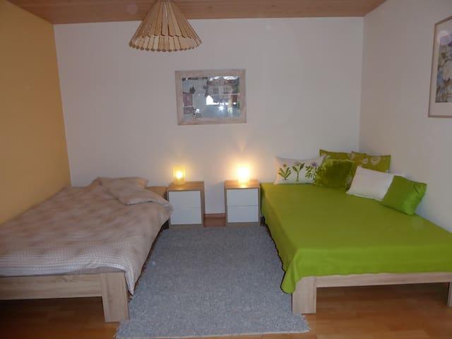 Unterkunft zur grossen Linde - Möhlin - House