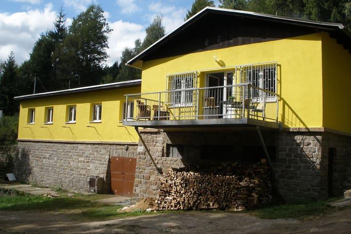 Villa confortable avec piscine privée à Nedvedice