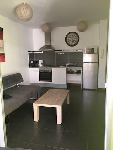 Appartement F2 coquet et au cœur de la ville