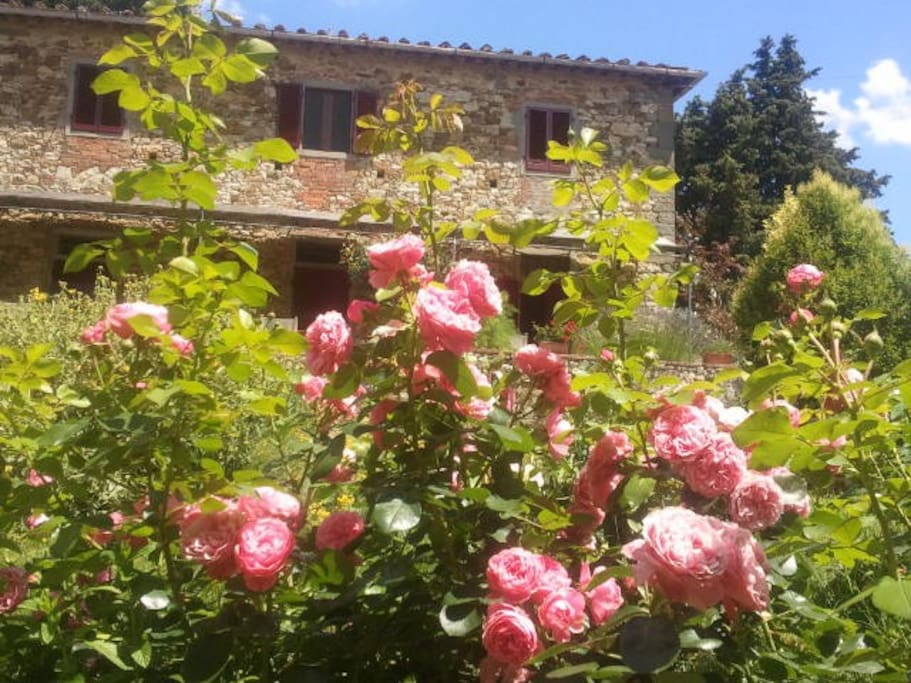 The main house at Ancora del Chianti Eco BB & Art Retreat