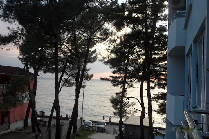 Спокойный отдых на берегу Черного моря
