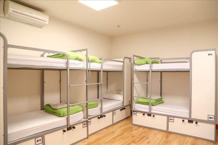 CATS  Hostel- Bed in 12 bed dorm shared bathroom