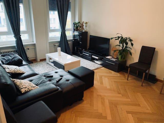 Appartement rénové neuf au coeur de Genève