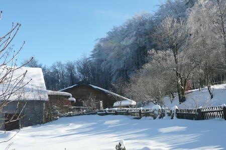 Ferien auf dem Bauernhof - Kierspe - Lägenhet