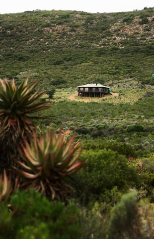 Charming loghome in the mountains - Uitenhage - Mökki