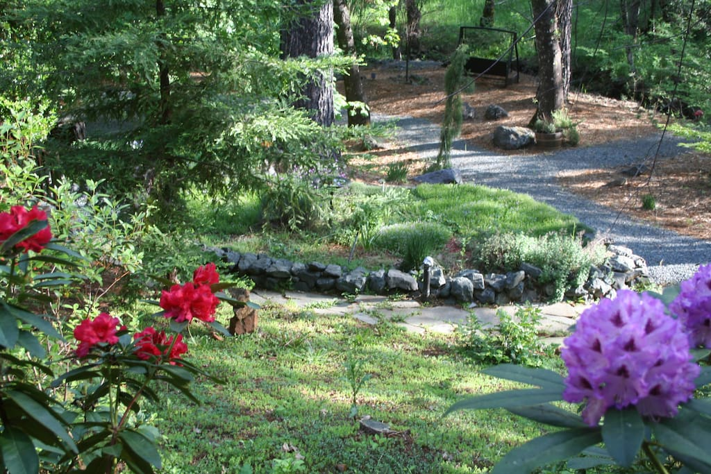 Springtime blooms! - Stroll on the paths around the property