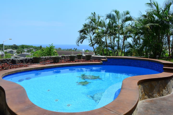 "THE GREAT KONA STAY ""great reviews"" - Kailua-Kona - Apartment"