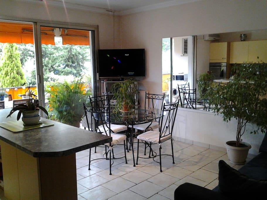 Salon cuisine salle à manger donnant sur terrasse 28 m2
