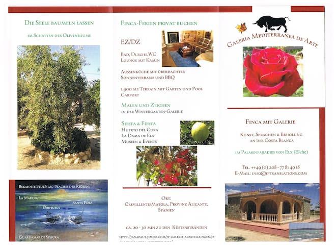 Finca, near ELX/Alicante - Crevillent