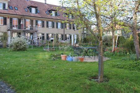 Schönes Zimmer mit Gartensicht  - Berne