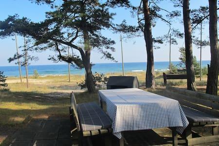 En riktig Pärla  50m från stranden - Yngsjö - Haus